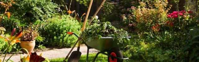 Nebenkosten Mieter Kommen Pflicht Nicht Nach Treppenhaus Garten Winterdienst